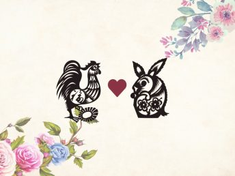 Rooster man Rabbit woman compatibility