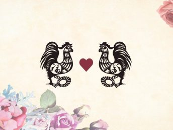 Rooster man Rooster woman compatibility