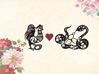 Rooster man Snake woman compatibility