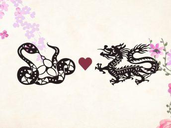 Snake man Dragon woman compatibility