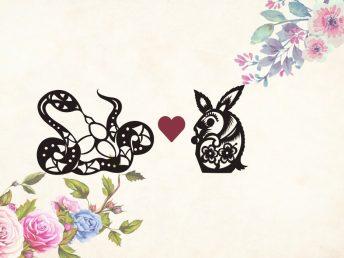 Snake man Rabbit woman compatibility