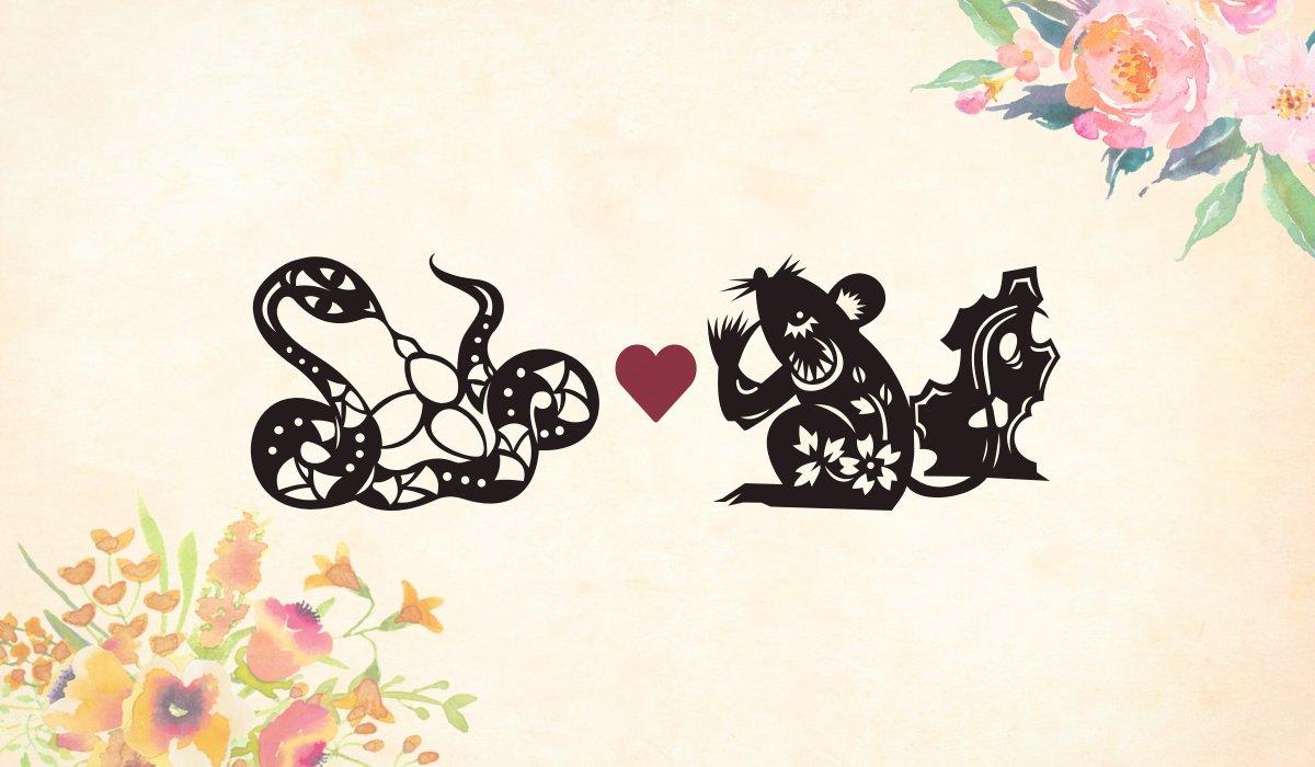 Snake man Rat woman compatibility