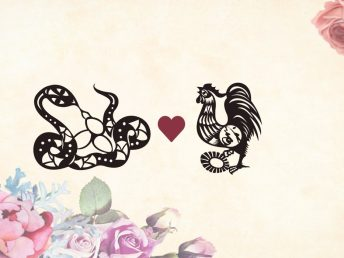 Snake man Rooster woman compatibility